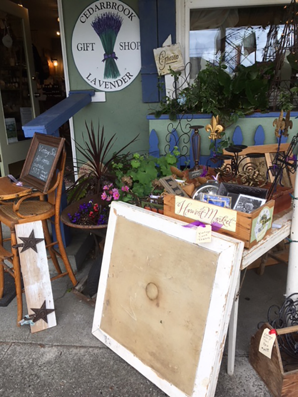 Cedarbrook Lavender Vintage Sale
