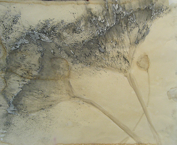 """""""Coffee Flowers 3"""" by Mary Franchini"""