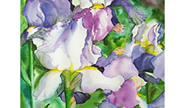 April 7 First Friday Art Walk Sequim Bursts and Blushes with a Spring Pink Theme