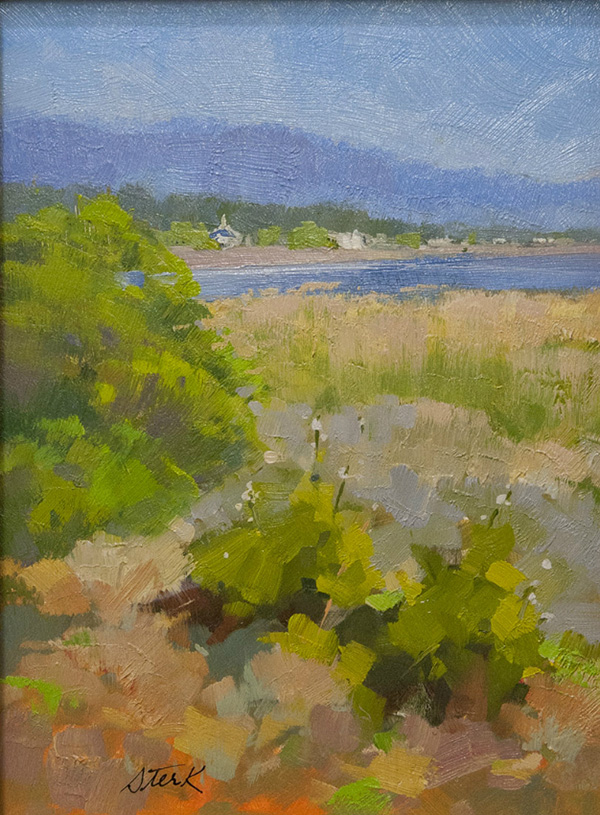 """Sequim Bay"" by Deb Sterk"