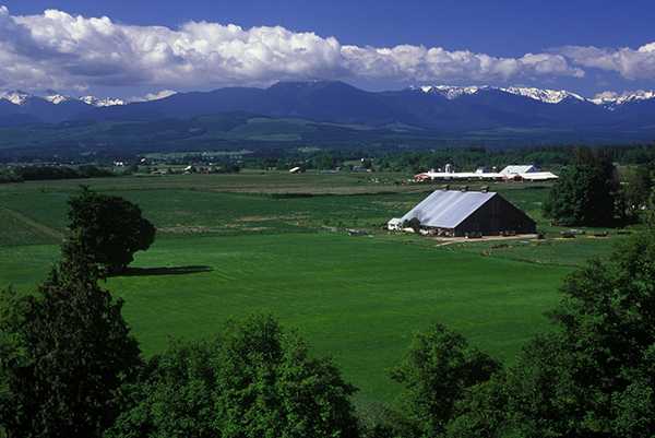 """Sequim Valley"" by Jan Kepley"