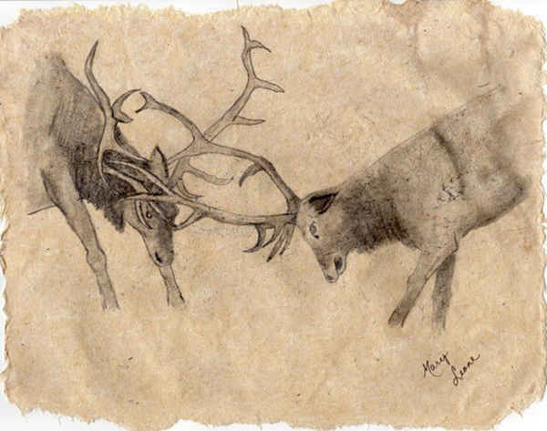 """Elk"" by Mary Howard"